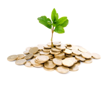 Business-finance-money-plant